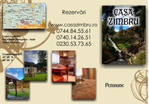 carte de vizita 2